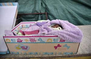 bebés duermen en cajas de cartón